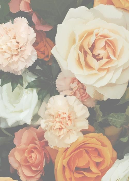 orange, peach & white roses