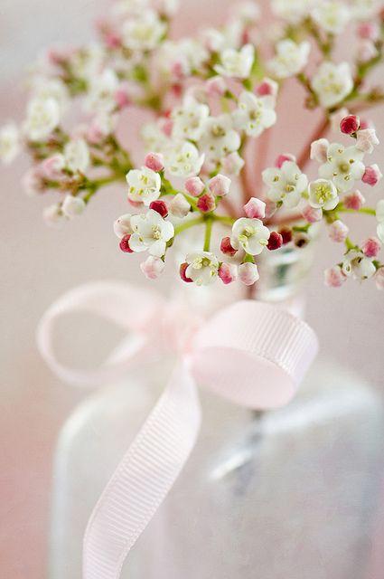 #wedding #flower #wax flowers