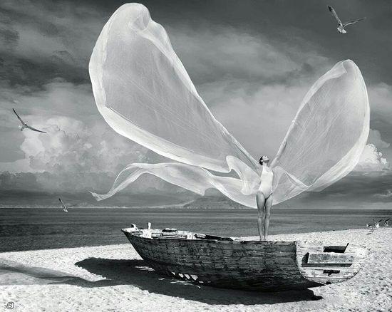 #wind