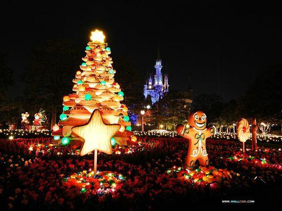 Christmas decoration Disneyland Tokyo