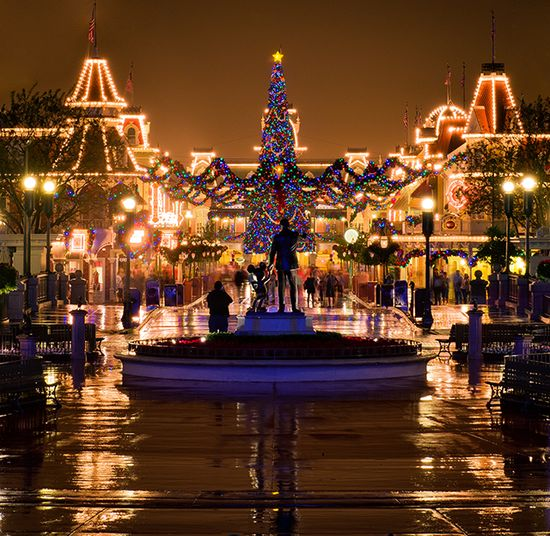 Photos from WDW of New Fantasyland and Christmas.