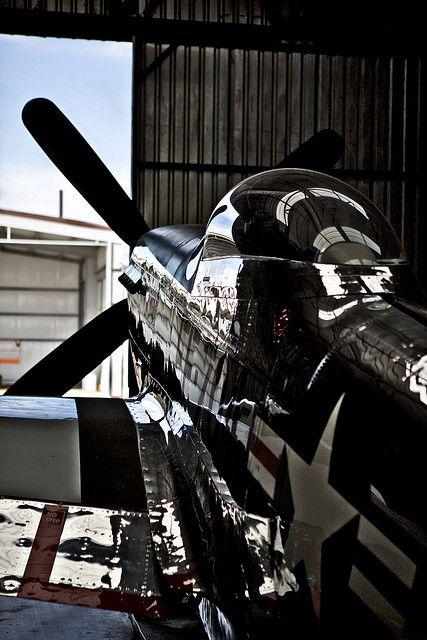 war bird P-51