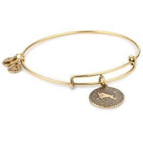 """Alex and Ani """"Bangle Bracelet Bar"""" Russian Gold-Plated Aries Bangle Bracelet.  List Price:#EANF#  Get Discount 70% on Love and Pride Jewelry Collection.Check at clothingshop.me/..."""