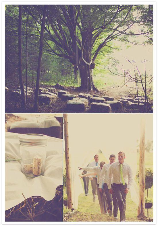 Tree #prepare for picnic #summer picnic