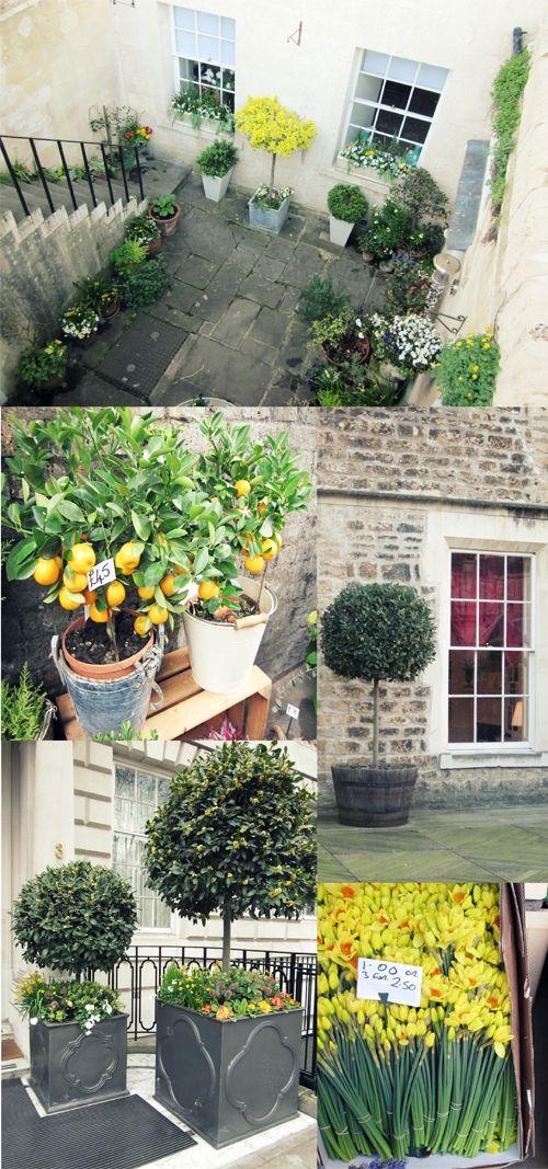 An english garden in the city.