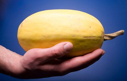 Spaghetti squash guide: What to look for, cooking tips & benefits