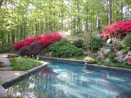 Wonderful landscaping. #Pool #Yard #Garden #Trees #Zillow