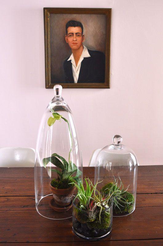 gardens under glass
