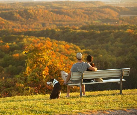 Fall color in southern Illinois. Read about a trip along the Shawnee Hills Wine Trail: www.midwestliving...