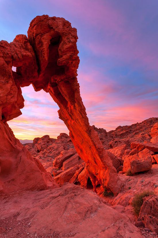 Elephant Rock Morning Glow - Valley Of Fire State Park - Overton, Nevada