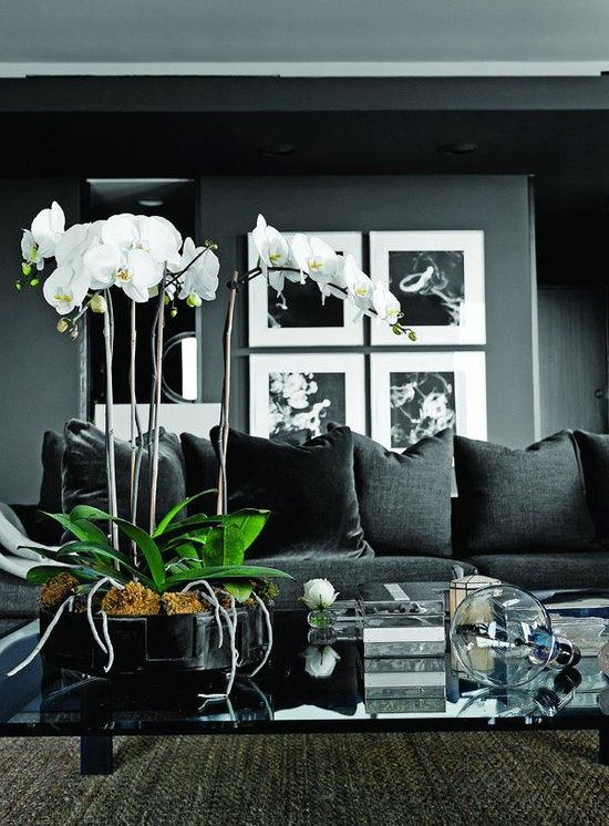 black #interior house design