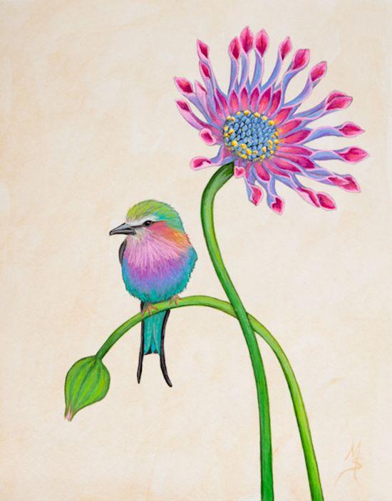 Bird Art Botanical Print Lilac Breasted Roller Bird by SummerHour