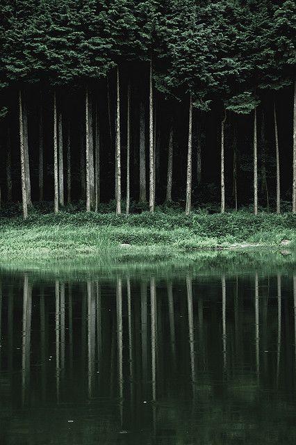 Yokai forest in Kameoka, Kyoto