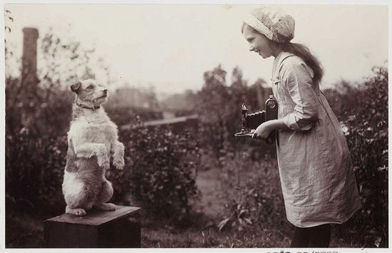 Girl photographing a dog, photographer unknown. Collection of the National Media Museum
