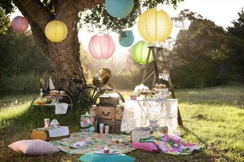 Under the tree picnic