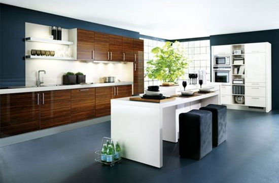 Top kitchen design ideas image