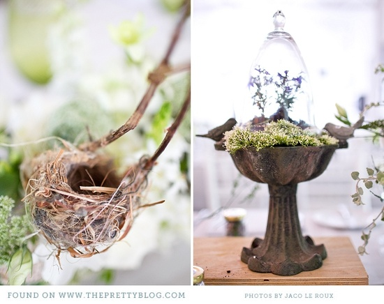 Bird inspired
