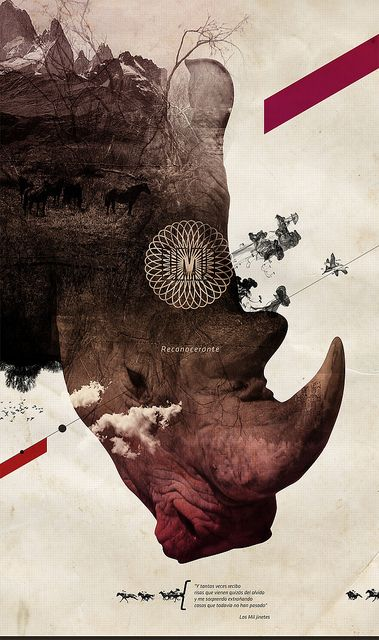 Rhino graphic design