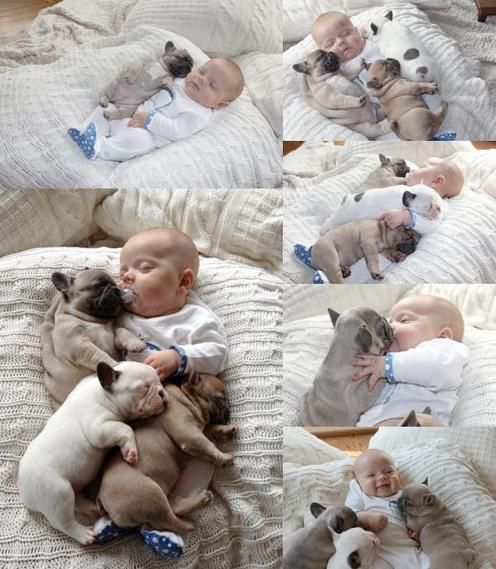 #Cute #baby #and #puppies
