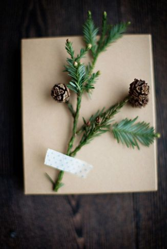 Pretty package. #branch #simple #gift #wrapping #presents #washi #Tape #pine #cones