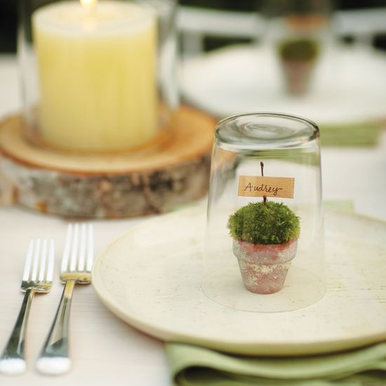 Mini Terrarium Place Cards