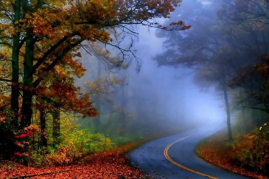 The bend of autumn mist