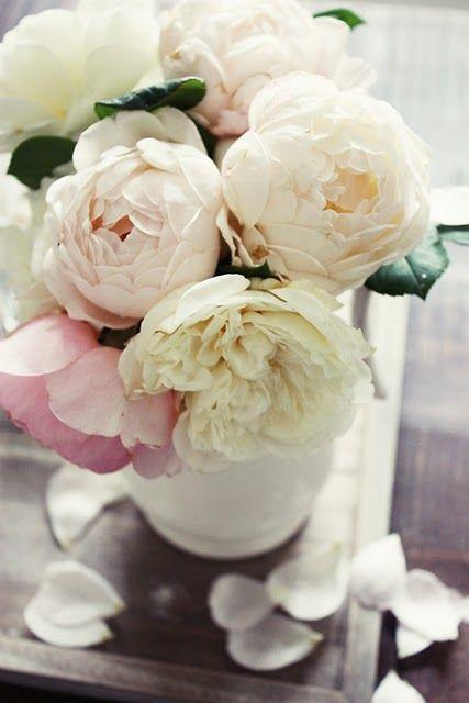 Peonies #flowers #simple #white #pink #peach
