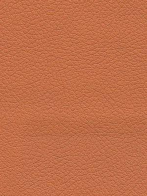 Schumacher Fabric Brisa-Orange $141.25 price per yard #interiors #decor #orangefabric