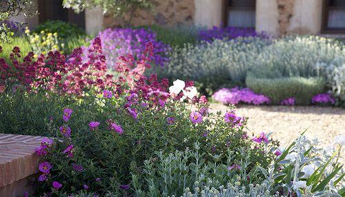Jardin Toledo 2009: detalle plantación patio. Jardín mediterraneo, grava, jardín seco. Gravel garden, xeriscaping, dry garden, mediterranean garden.