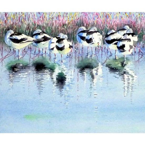 Wild birds watercolor painting