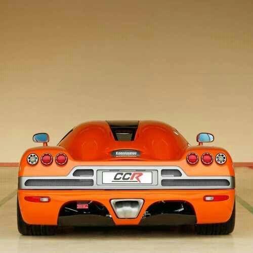 Beautiful orange sports