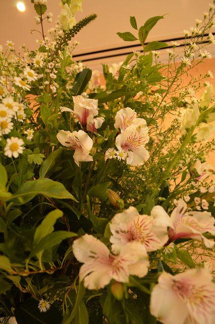 A beautiful flowers arrangement
