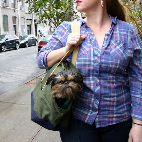 Pet Tote Large Olive Navy by LoveThyBeast