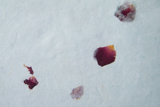 Rose petals embedded in handmade paper make lovely confetti cones www.daisyshop.co.uk £0.49 per A4 sheet.