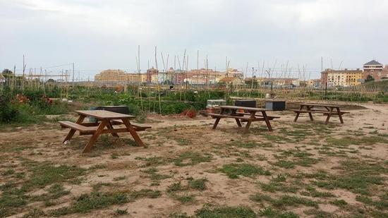 picnic-en-los-huertos