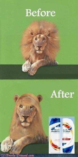 Great ad for shampoo.