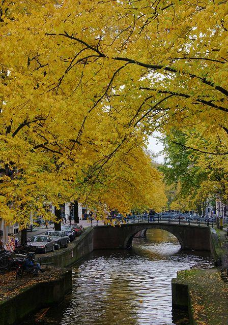 autumn, amsterdam, The Netherlands.  Photo: mariusz kluzniak, via Flickr