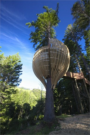 Yellow Treehouse Restaurant - Warkworth, New Zealand - 2008 - Pacific Environment Architects #treehouse #sustainable #design #wood #architecture