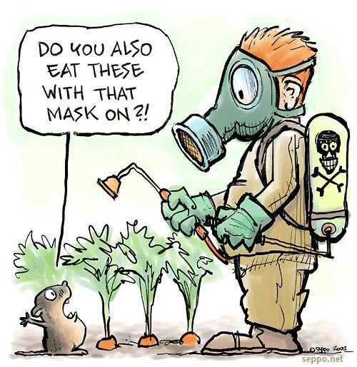 Garden vole and pesticide, keywords: garden gardener pesticide water vole carrot chemical toxic herbicide insectiside mask health residue food sustainable environment nutrition cartoon