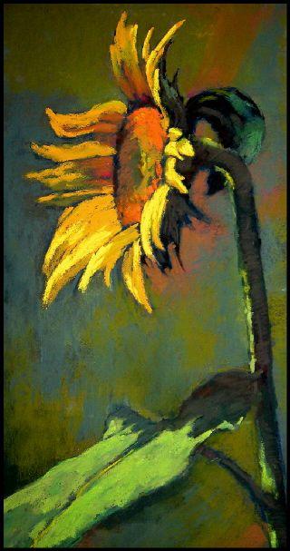 Sunflower!  Artist Terri Ford