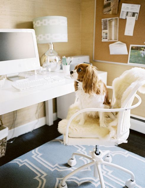 MadeByGirl: Design: Office Inspiration