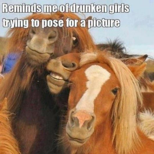 haha, lol, funny, silly, cute, humour, humor