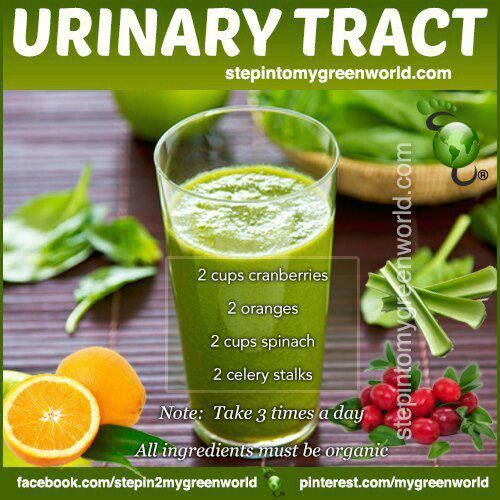 Uti Smoothie natural faster healing of Urinary Tract infections and better Urinary Tract health