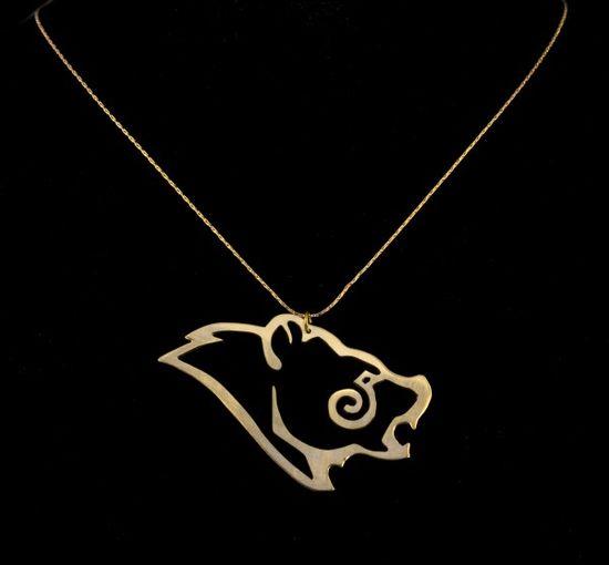 Skyrim necklace.