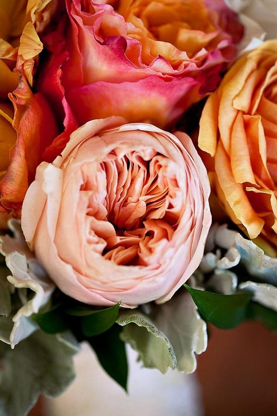 floral beauties...