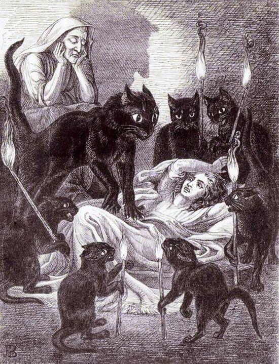 Witchcraft#pet boy