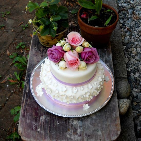 Amazing Colorful Roses Little White Cake