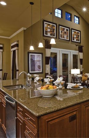 austin, tx homes interior decorating