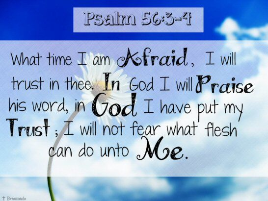 """What time I am afraid, I will trust in thee.  In God I will praise his word, in God I have put my trust; I will not fear what flesh can do unto me."" ~ Psalm 56:3-4"