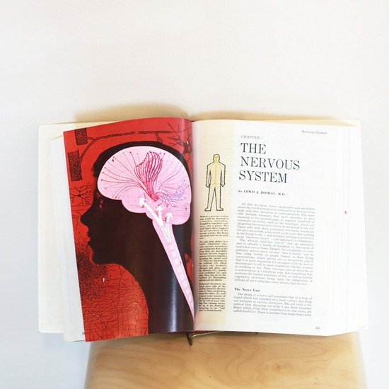 Vintage Human Health Guide with Diagrams of Human Body. $30,00, via Etsy.